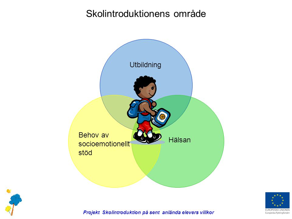 Skolintroduktionens område Utbildning Hälsan Behov av socioemotionellt stöd Projekt Skolintroduktion på sent anlända elevers villkor