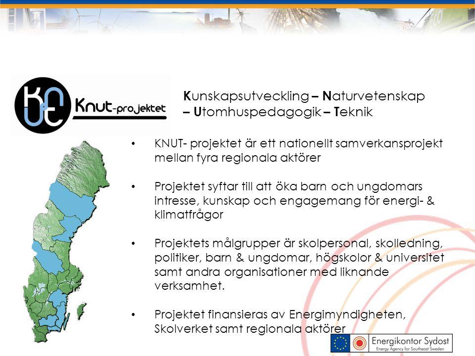 Fakta om projektet: Projektperiod :Höst 2009 – sommar 2012 (med sikte på fortsättning) Projektomslutning :Ca 25 000 000 SEK Finansiärer: Energimyndigheten, Skolverket, energibranschen samt regional finansiering Nationell styrgrupp: Myndigheter, departement, branschen/näringslivet, representanter från regionerna FoU: Projektet följs av en forskargrupp med representanter från de fyra regionernas lärosäten Nationell projektkoordinator – Energikontor Sydost