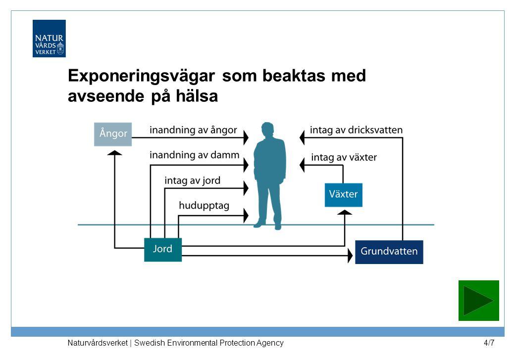 Naturvårdsverket | Swedish Environmental Protection Agency 5/7 Grundvatten skyddas vid KM och MKM: −exponering via intag av dricksvatten i hälsoriktvärde (KM) −halter i grundvatten nedströms* underskrider halva dricksvattennormen (KM och MKM) Ytvatten skyddas så att tillskott inte gör att haltkriterier överskrids (KM och MKM) −liten avvikelse i förhållande till normalt förekommande halter för metaller −halter underskrider halva effektgränsen för organiska ämnen Markmiljön skyddas på en nivå som motsvarar skydd av: −75% av arterna vid KM och 50% av arterna vid MKM Exponeringen från ämnen med tröskeleffekt från det förorenade området begränsas till: −50 % av tröskeldosen (TDI/RfC) generellt −20 % av tröskeldosen (TDI/RfC) för Pb, Cd, Hg och 10 % för dioxin, PCB För genotoxiska, cancerogena ämnen (utan tröskeleffekt) accepteras maximalt ett extra cancerfall per 100 000 invånare *0 m för KM, 200 m för MKM Generella riktvärden – antaganden och val Resultat av utgångspunkterna