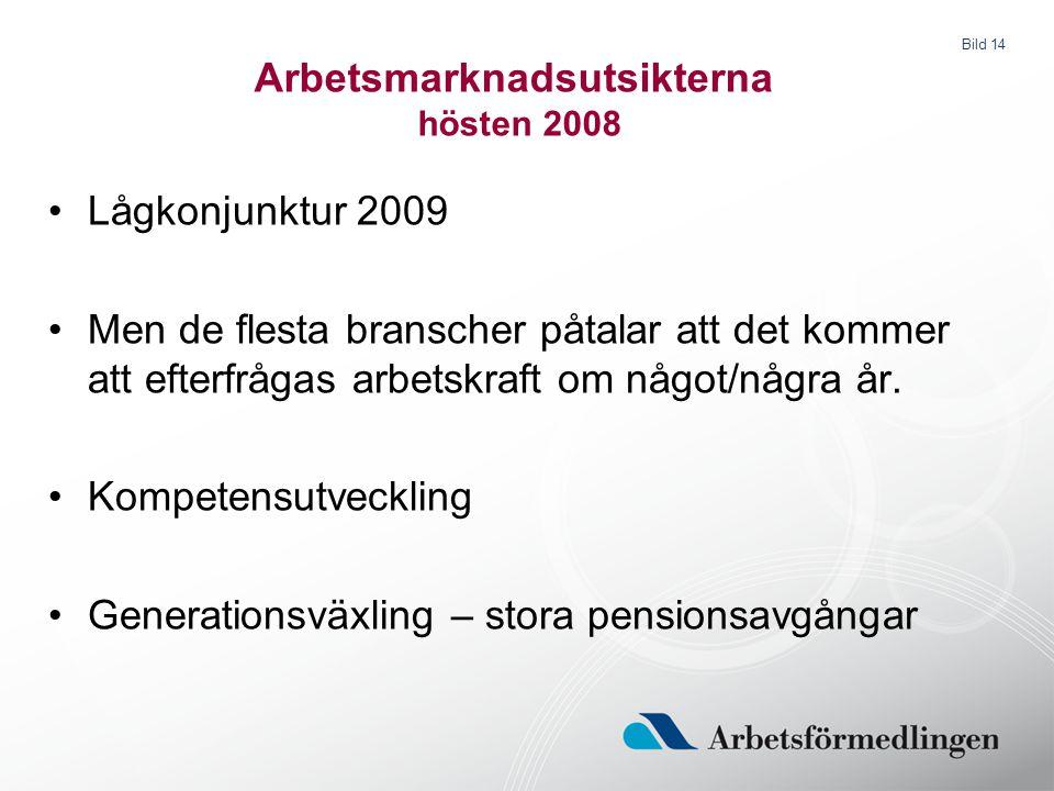 Bild 14 Arbetsmarknadsutsikterna hösten 2008 Lågkonjunktur 2009 Men de flesta branscher påtalar att det kommer att efterfrågas arbetskraft om något/nå