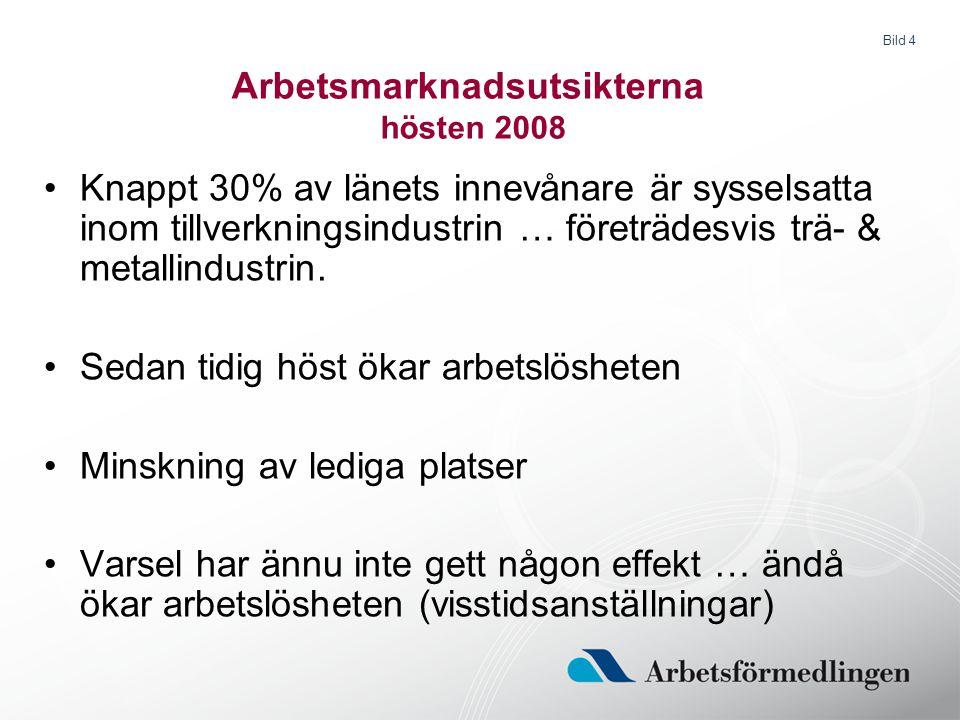 Bild 4 Arbetsmarknadsutsikterna hösten 2008 Knappt 30% av länets innevånare är sysselsatta inom tillverkningsindustrin … företrädesvis trä- & metallin