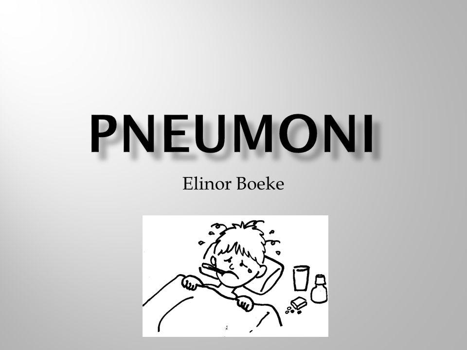 Elinor Boeke