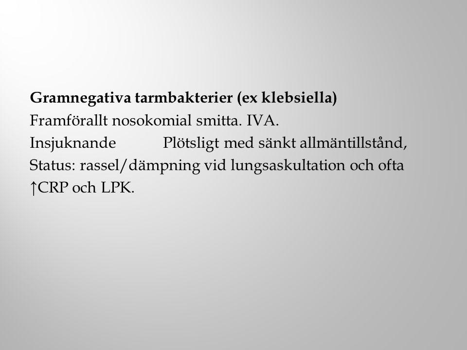 Gramnegativa tarmbakterier (ex klebsiella) Framförallt nosokomial smitta. IVA. Insjuknande Plötsligt med sänkt allmäntillstånd, Status: rassel/dämpnin