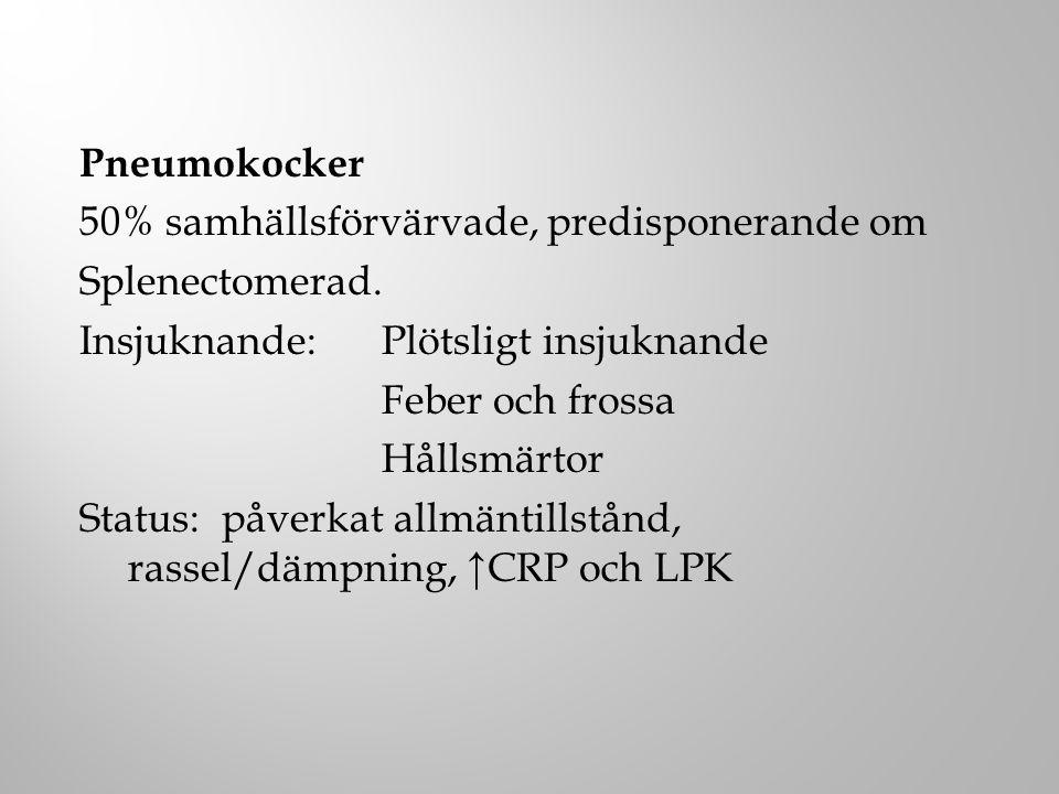 Pneumokocker 50% samhällsförvärvade, predisponerande om Splenectomerad. Insjuknande: Plötsligt insjuknande Feber och frossa Hållsmärtor Status: påverk