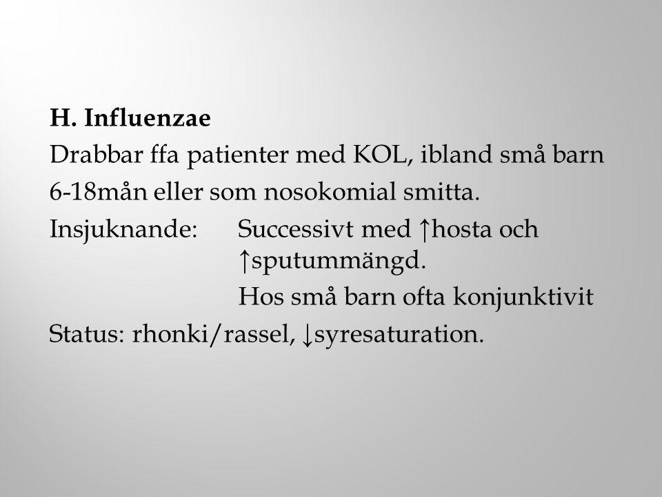 H. Influenzae Drabbar ffa patienter med KOL, ibland små barn 6-18mån eller som nosokomial smitta. Insjuknande:Successivt med ↑hosta och ↑sputummängd.
