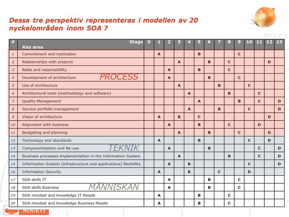 Dessa tre perspektiv representeras i modellen av 20 nyckelområden inom SOA ? PROCESS TEKNIK MÄNNISKAN
