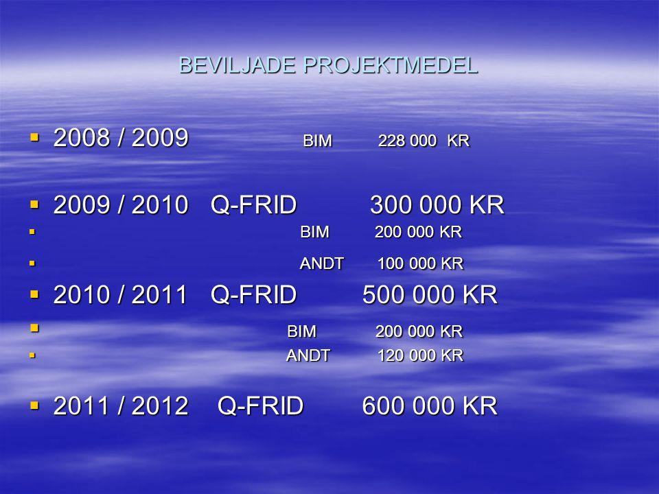 BEVILJADE PROJEKTMEDEL  2008 / 2009 BIM 228 000 KR  2009 / 2010 Q-FRID 300 000 KR  BIM 200 000 KR  ANDT 100 000 KR  2010 / 2011 Q-FRID 500 000 KR