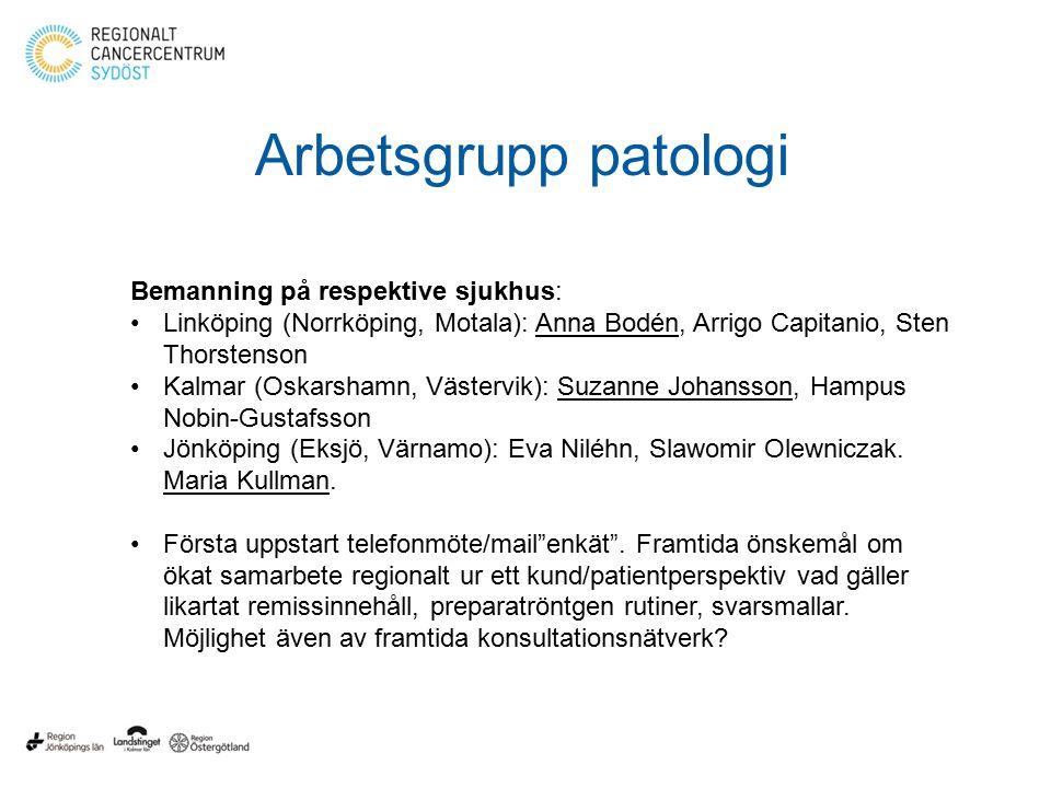 Bemanning på respektive sjukhus: Linköping (Norrköping, Motala): Anna Bodén, Arrigo Capitanio, Sten Thorstenson Kalmar (Oskarshamn, Västervik): Suzanne Johansson, Hampus Nobin-Gustafsson Jönköping (Eksjö, Värnamo): Eva Niléhn, Slawomir Olewniczak.