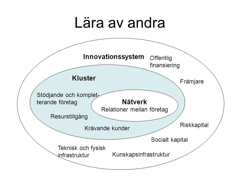 Nätverk Relationer mellan företag Innovationssystem Kluster Stödjande och komplet- terande företag Resurstillgång Krävande kunder Främjare Kunskapsinf