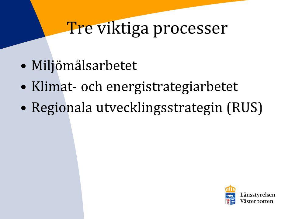 Tre viktiga processer Miljömålsarbetet Klimat- och energistrategiarbetet Regionala utvecklingsstrategin (RUS)