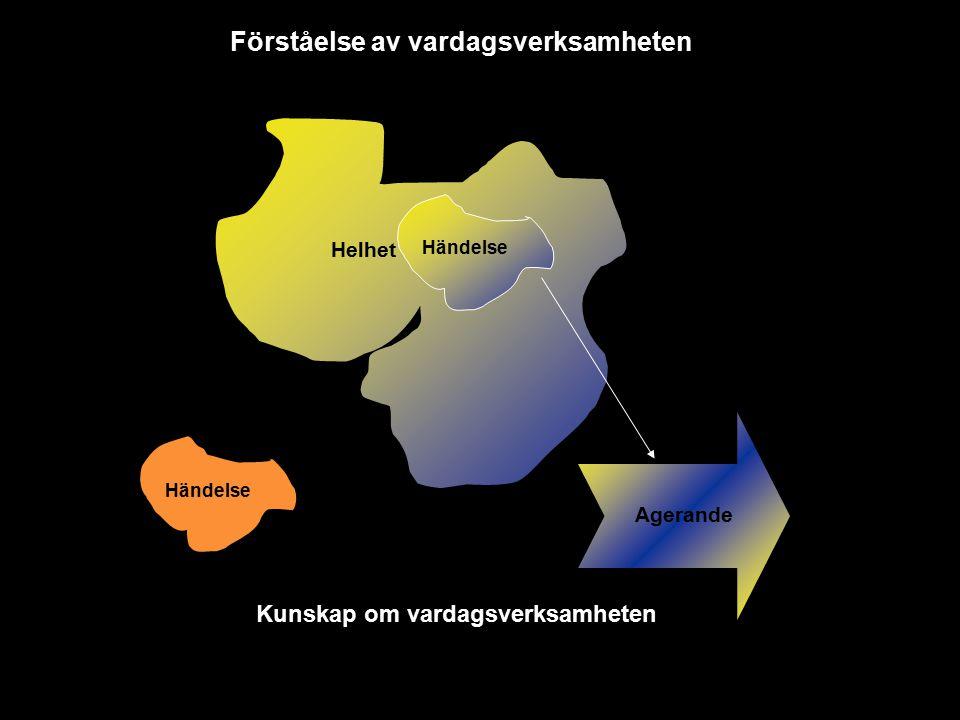 Helhet Händelse Agerande Kunskap om vardagsverksamheten Förståelse av vardagsverksamheten