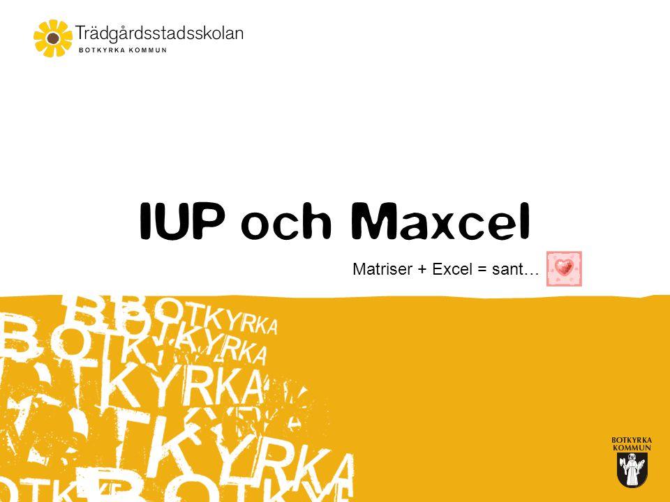 IUP och Maxcel Matriser + Excel = sant…