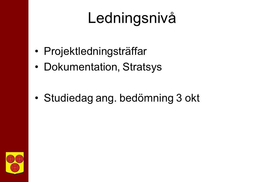 Ledningsnivå Projektledningsträffar Dokumentation, Stratsys Studiedag ang. bedömning 3 okt