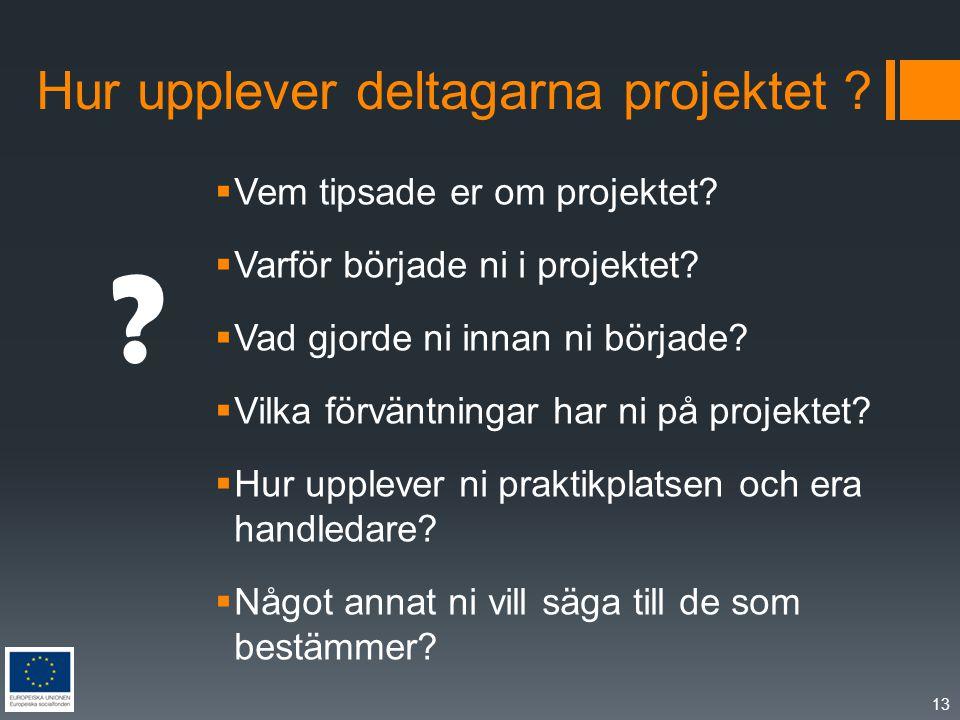 Hur upplever deltagarna projektet .  Vem tipsade er om projektet.