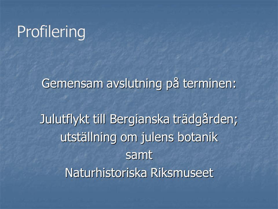 Gemensam avslutning på terminen: Julutflykt till Bergianska trädgården; utställning om julens botanik samt Naturhistoriska Riksmuseet