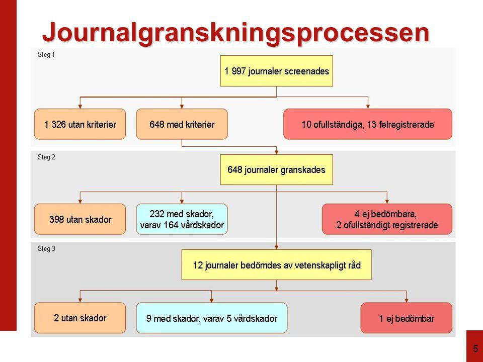 5 Journalgranskningsprocessen