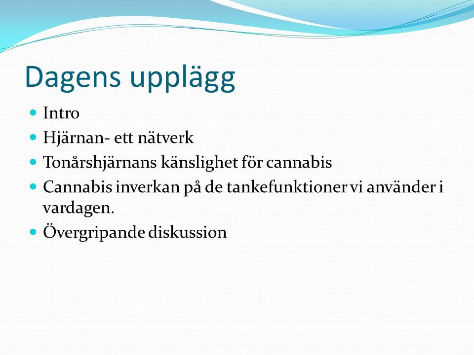 Thomas Lundqvist Leg psykolog & docent Rådgivningsbyrån i narkotikafrågor i Lund Psykiatri Skåne Cannabis och tonårshjärnan - för en behandlare Linköp