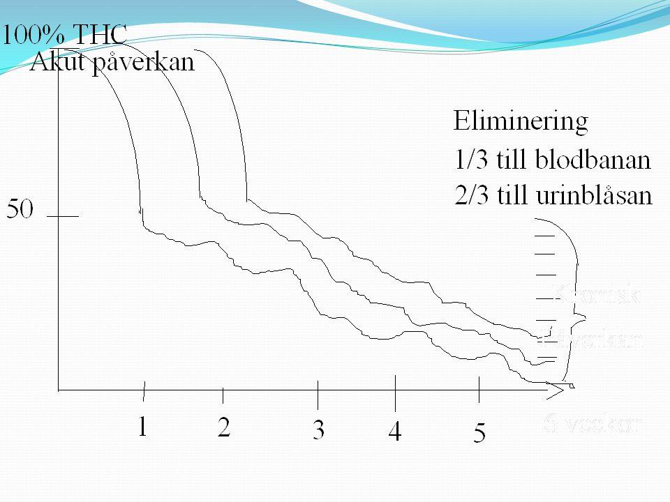 Akut påverkan har två faser Högdos = utåtriktad och aktiv Låg dos = inåtriktad och aktiv Cannabisrusen Kronisk påverkan utvecklas i förhållande till f