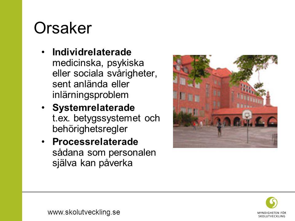www.skolutveckling.se Orsaker Individrelaterade medicinska, psykiska eller sociala svårigheter, sent anlända eller inlärningsproblem Systemrelaterade t.ex.