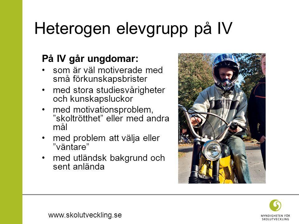 www.skolutveckling.se Heterogen elevgrupp på IV På IV går ungdomar: som är väl motiverade med små förkunskapsbrister med stora studiesvårigheter och k