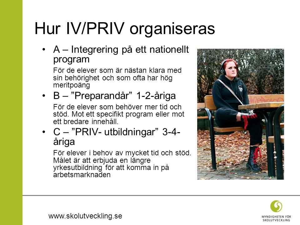 www.skolutveckling.se Hur IV/PRIV organiseras A – Integrering på ett nationellt program För de elever som är nästan klara med sin behörighet och som ofta har hög meritpoäng B – Preparandår 1-2-åriga För de elever som behöver mer tid och stöd.