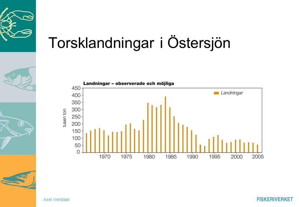 Axel Wenblad Torsklandningar i Östersjön