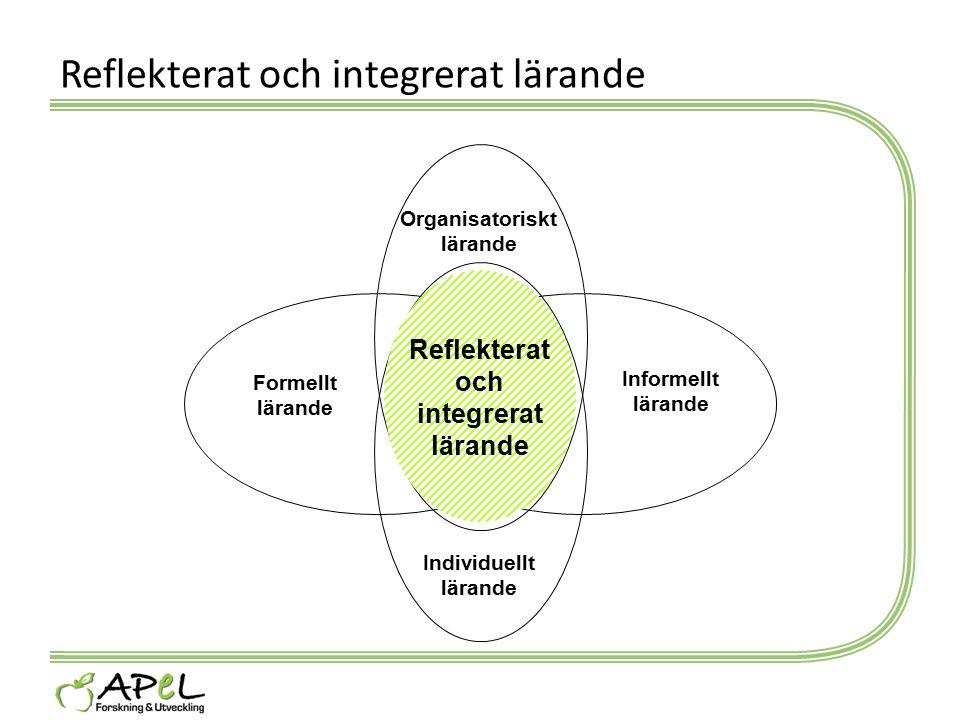 Reflekterat och integrerat lärande Formellt lärande Informellt lärande Reflekterat och integrerat lärande Organisatoriskt lärande Individuellt lärande