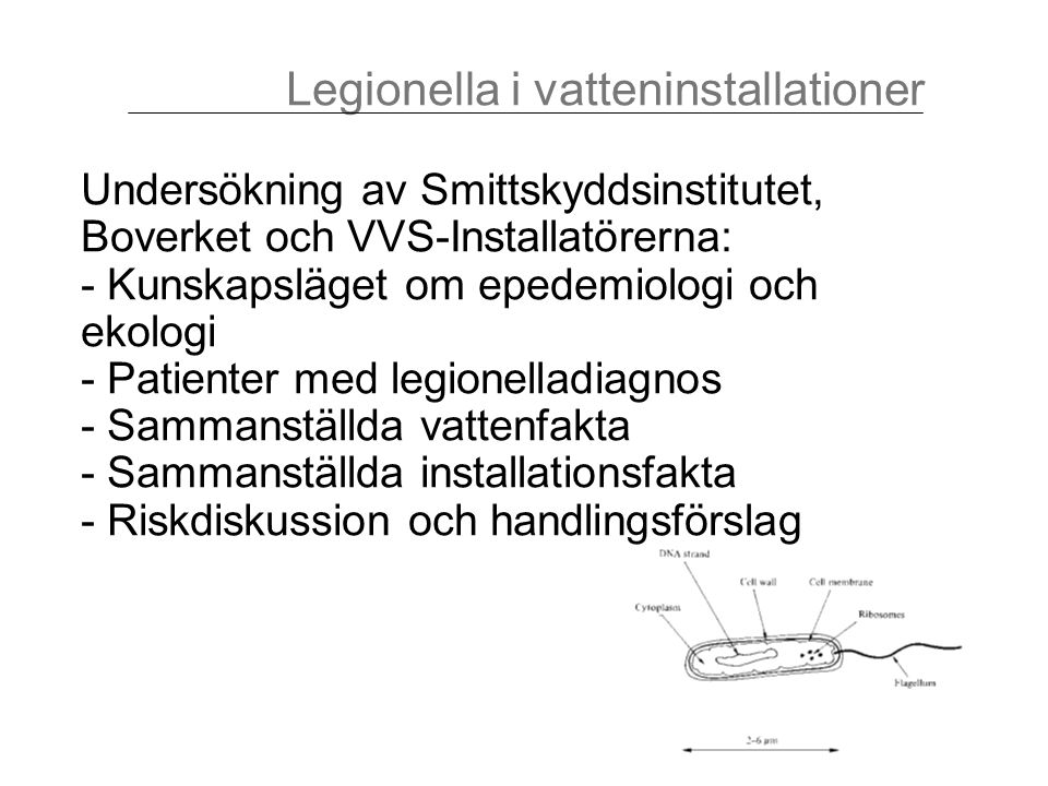 Inventering efter checklista Baserad på: - litteraturstudier - bedömningar vid tidigare legionellafall - diskussioner med personer som regelbundet utför legionellasanering Förankrad med referensgrupp Legionella i vatteninstallationer