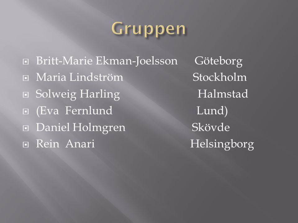  Britt-Marie Ekman-Joelsson Göteborg  Maria Lindström Stockholm  Solweig Harling Halmstad  (Eva Fernlund Lund)  Daniel Holmgren Skövde  Rein Anari Helsingborg