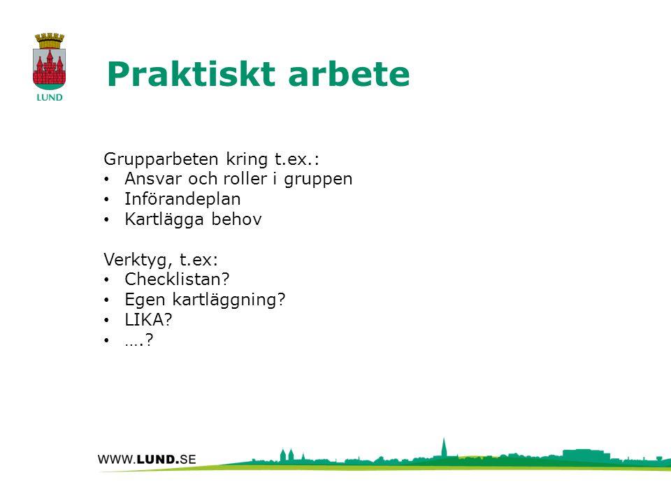 Grupparbeten kring t.ex.: Ansvar och roller i gruppen Införandeplan Kartlägga behov Verktyg, t.ex: Checklistan.