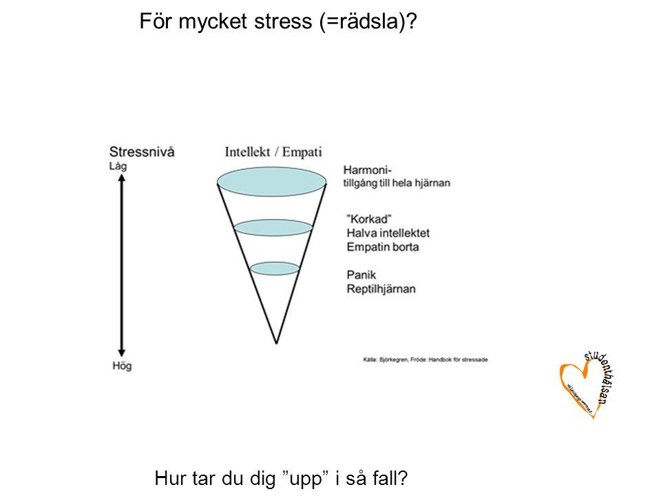 """Hur tar du dig """"upp"""" i så fall? För mycket stress (=rädsla)?"""