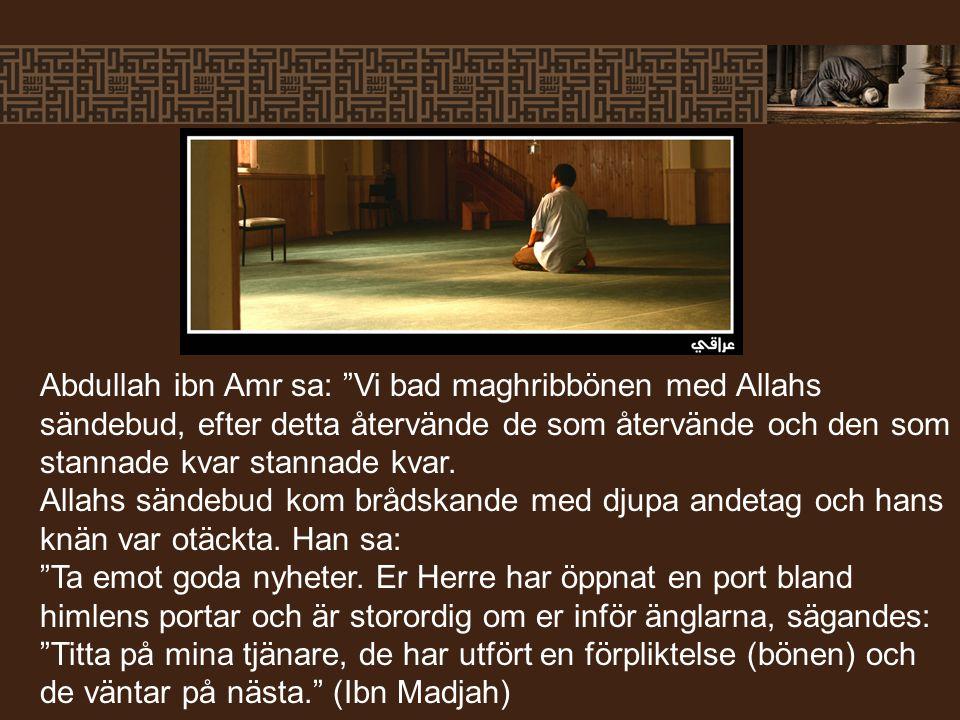 Abdullah ibn Amr sa: Vi bad maghribbönen med Allahs sändebud, efter detta återvände de som återvände och den som stannade kvar stannade kvar.