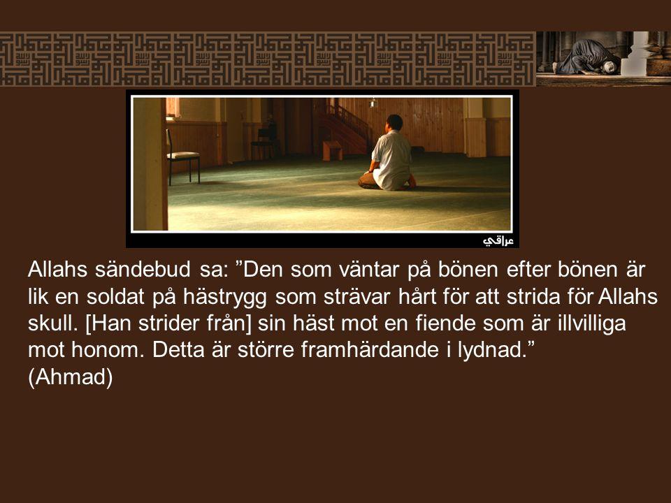 Allahs sändebud sa: Den som väntar på bönen efter bönen är lik en soldat på hästrygg som strävar hårt för att strida för Allahs skull.