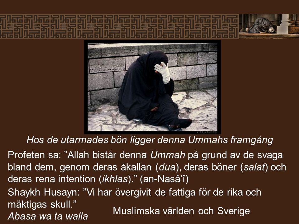 Hos de utarmades bön ligger denna Ummahs framgång Profeten sa: Allah bistår denna Ummah på grund av de svaga bland dem, genom deras åkallan (dua), deras böner (salat) och deras rena intention (ikhlas). (an-Nasâ'î) Shaykh Husayn: Vi har övergivit de fattiga för de rika och mäktigas skull. Abasa wa ta walla Muslimska världen och Sverige
