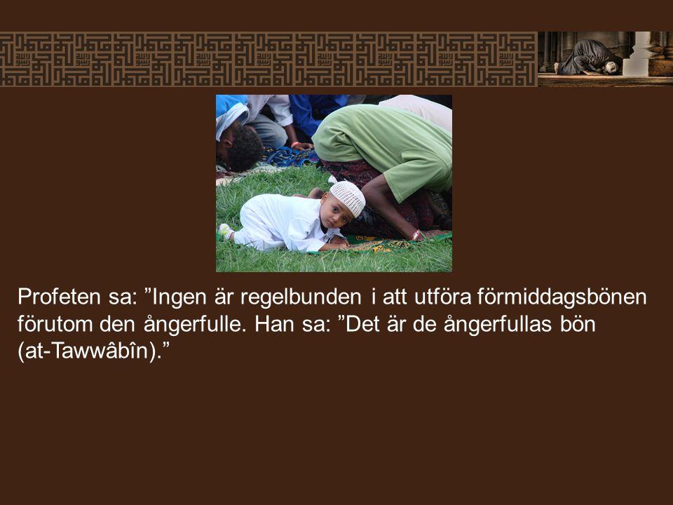 Profeten sa: Ingen är regelbunden i att utföra förmiddagsbönen förutom den ångerfulle.