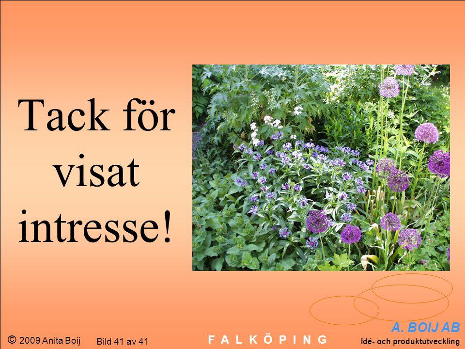 A. BOIJ AB Idé- och produktutveckling © 2009 Anita Boij Bild 41 av 41 F A L K Ö P I N G Tack för visat intresse!