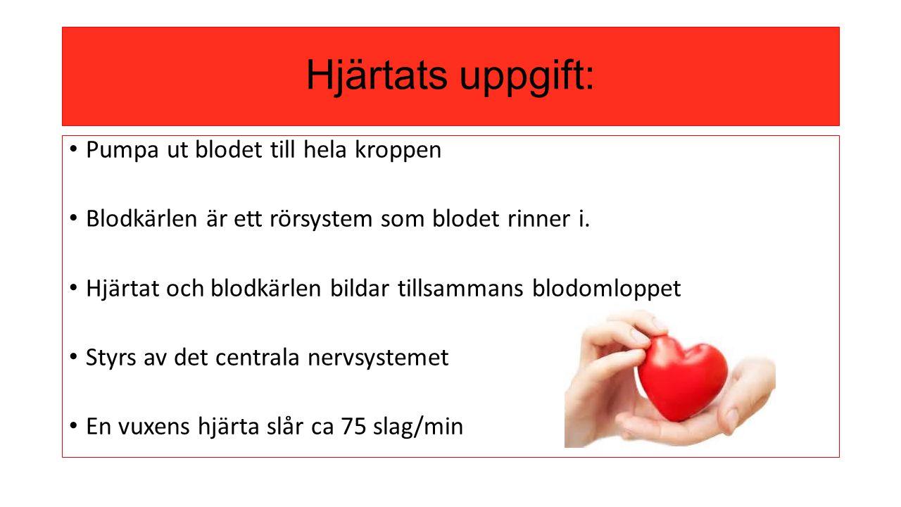 Hjärtats uppgift: Pumpa ut blodet till hela kroppen Blodkärlen är ett rörsystem som blodet rinner i. Hjärtat och blodkärlen bildar tillsammans blodoml