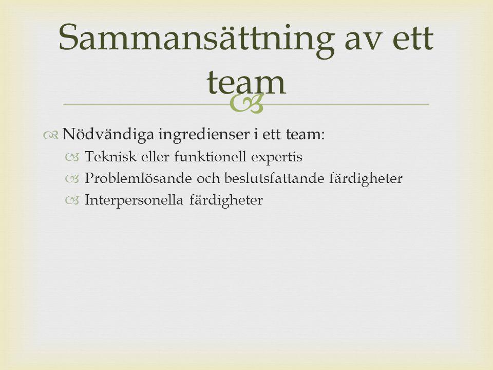   Nödvändiga ingredienser i ett team:  Teknisk eller funktionell expertis  Problemlösande och beslutsfattande färdigheter  Interpersonella färdigheter Sammansättning av ett team