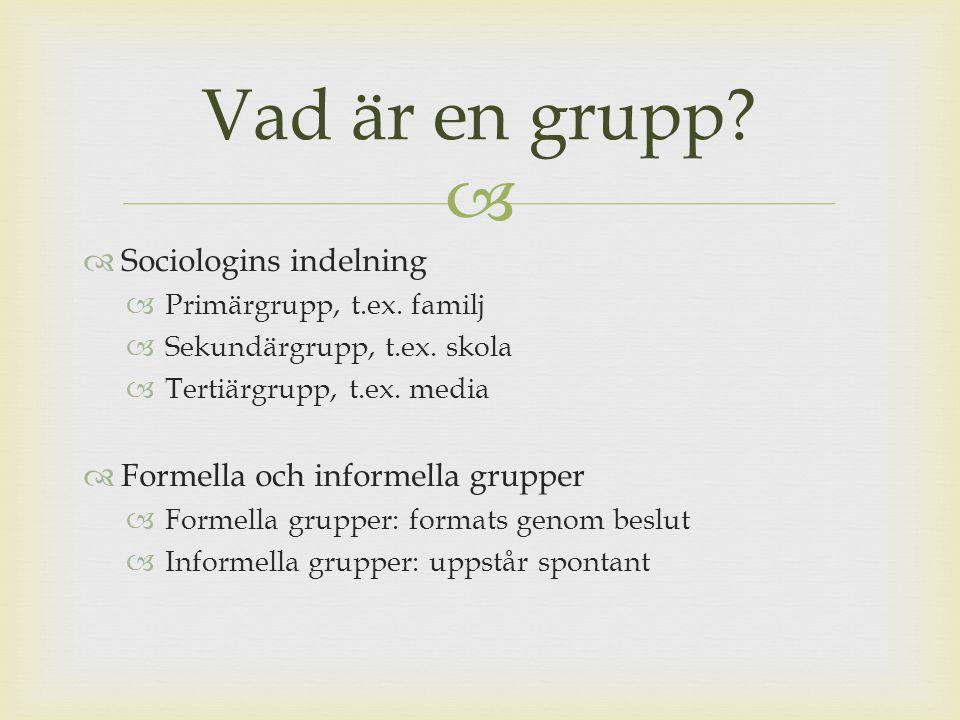  En grupp existerar när två eller fler definierar sig som medlemmar av den och när dess existens erkänns av åtminstone någon annan (Brown, 1990)  En grupp består av två eller fler ömsesidigt beroende individer som påverkar varandra i ett socialt samspel (Forsyth, 2006) Definitioner