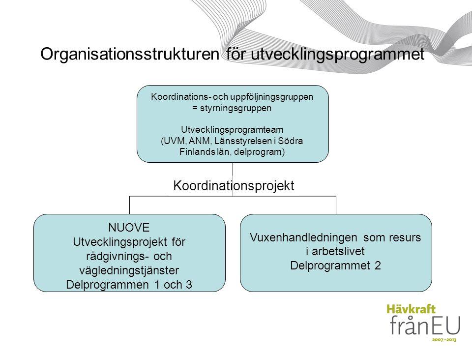 Organisationsstrukturen för utvecklingsprogrammet Koordinations- och uppföljningsgruppen = styrningsgruppen Utvecklingsprogramteam (UVM, ANM, Länsstyrelsen i Södra Finlands län, delprogram) NUOVE Utvecklingsprojekt för rådgivnings- och vägledningstjänster Delprogrammen 1 och 3 Vuxenhandledningen som resurs i arbetslivet Delprogrammet 2 Koordinationsprojekt