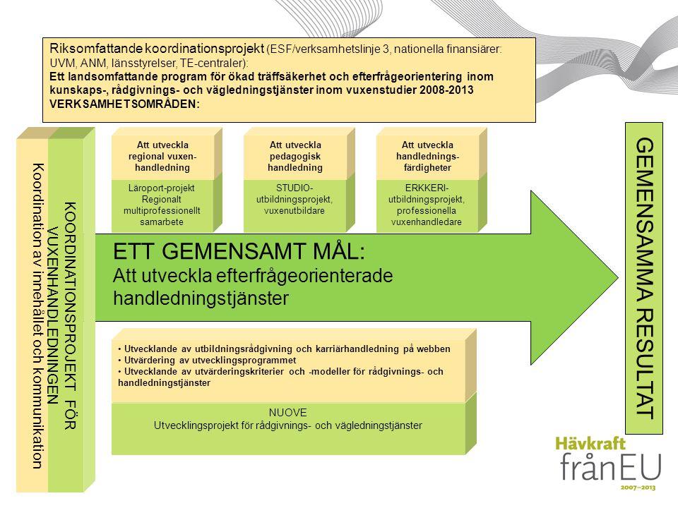ETT GEMENSAMT MÅL: Att utveckla efterfrågeorienterade handledningstjänster Koordination av innehållet och kommunikation Riksomfattande koordinationsprojekt (ESF/verksamhetslinje 3, nationella finansiärer: UVM, ANM, länsstyrelser, TE-centraler): Ett landsomfattande program för ökad träffsäkerhet och efterfrågeorientering inom kunskaps-, rådgivnings- och vägledningstjänster inom vuxenstudier 2008-2013 VERKSAMHETSOMRÅDEN: GEMENSAMMA RESULTAT Läroport-projekt Regionalt multiprofessionellt samarbete Att utveckla regional vuxen- handledning KOORDINATIONSPROJEKT FÖR VUXENHANDLEDNINGEN STUDIO- utbildningsprojekt, vuxenutbildare Att utveckla pedagogisk handledning ERKKERI- utbildningsprojekt, professionella vuxenhandledare Att utveckla handlednings- färdigheter NUOVE Utvecklingsprojekt för rådgivnings- och vägledningstjänster Utvecklande av utbildningsrådgivning och karriärhandledning på webben Utvärdering av utvecklingsprogrammet Utvecklande av utvärderingskriterier och -modeller för rådgivnings- och handledningstjänster
