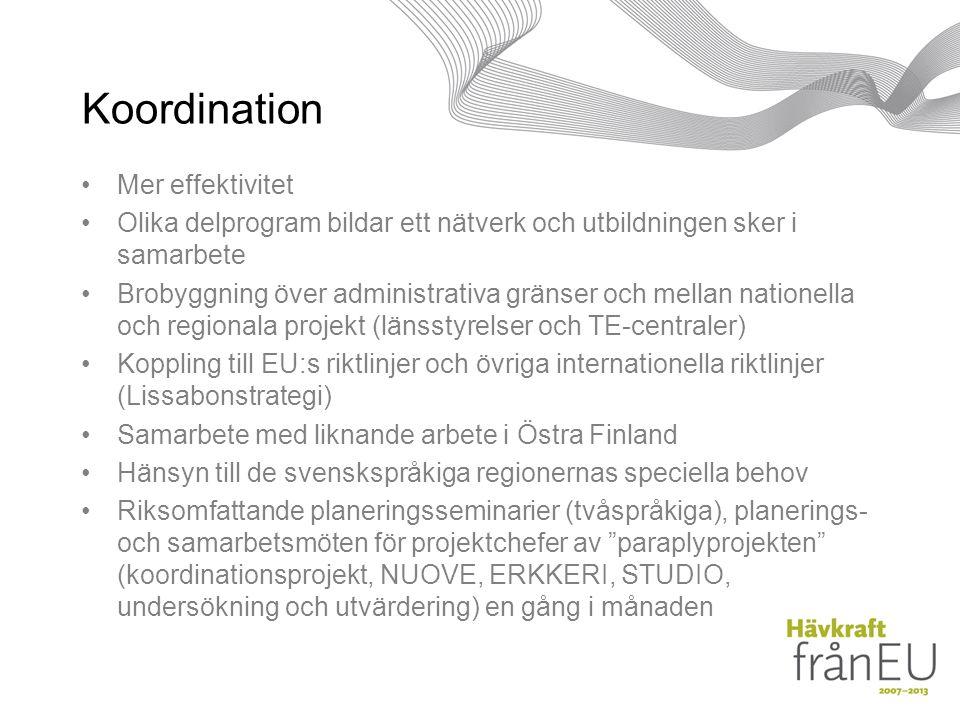 Koordination Mer effektivitet Olika delprogram bildar ett nätverk och utbildningen sker i samarbete Brobyggning över administrativa gränser och mellan nationella och regionala projekt (länsstyrelser och TE-centraler) Koppling till EU:s riktlinjer och övriga internationella riktlinjer (Lissabonstrategi) Samarbete med liknande arbete i Östra Finland Hänsyn till de svenskspråkiga regionernas speciella behov Riksomfattande planeringsseminarier (tvåspråkiga), planerings- och samarbetsmöten för projektchefer av paraplyprojekten (koordinationsprojekt, NUOVE, ERKKERI, STUDIO, undersökning och utvärdering) en gång i månaden