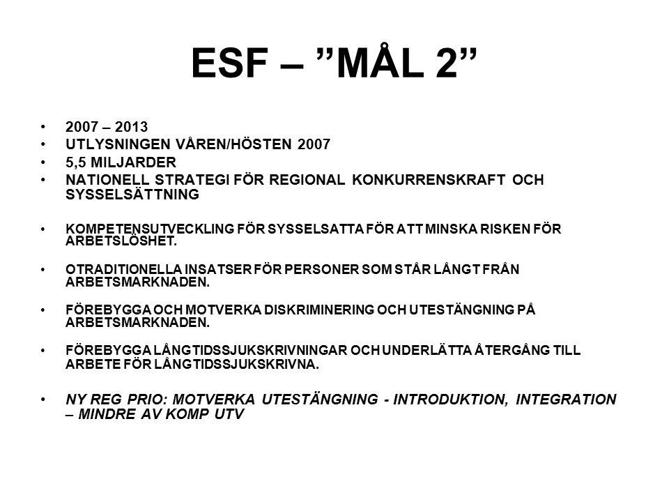 ESF – MÅL 2 2007 – 2013 UTLYSNINGEN VÅREN/HÖSTEN 2007 5,5 MILJARDER NATIONELL STRATEGI FÖR REGIONAL KONKURRENSKRAFT OCH SYSSELSÄTTNING KOMPETENSUTVECKLING FÖR SYSSELSATTA FÖR ATT MINSKA RISKEN FÖR ARBETSLÖSHET.