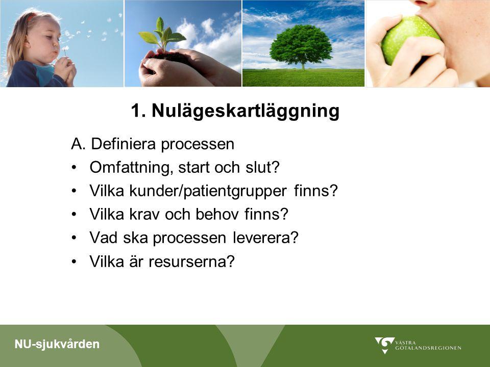 NU-sjukvården A. Definiera processen Omfattning, start och slut.