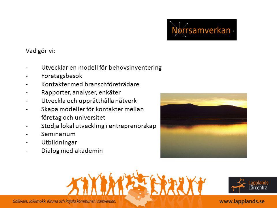 Vad gör vi: -Utvecklar en modell för behovsinventering -Företagsbesök -Kontakter med branschföreträdare -Rapporter, analyser, enkäter -Utveckla och up