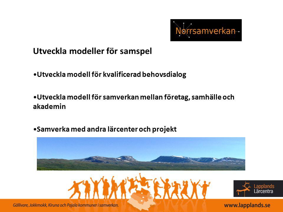 Utveckla modeller för samspel Utveckla modell för kvalificerad behovsdialog Utveckla modell för samverkan mellan företag, samhälle och akademin Samver