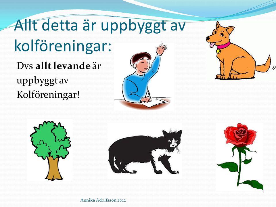 Allt detta är uppbyggt av kolföreningar: Dvs allt levande är uppbyggt av Kolföreningar! Annika Adolfsson 2012