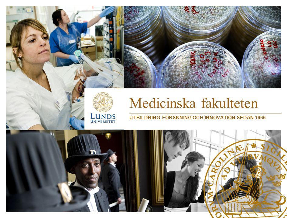 Strategisk plan 2012-2017 Vår vision är att vara en medicinsk fakultet som förstår, förklarar och förbättrar vår värld och människors hälsa.