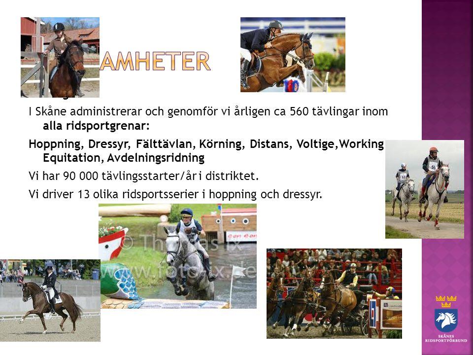 Tävling I Skåne administrerar och genomför vi årligen ca 560 tävlingar inom alla ridsportgrenar: Hoppning, Dressyr, Fälttävlan, Körning, Distans, Voltige,Working Equitation, Avdelningsridning Vi har 90 000 tävlingsstarter/år i distriktet.