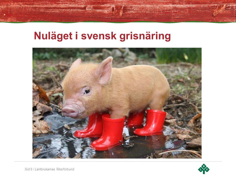 Sid 9 | Lantbrukarnas Riksförbund Nuläget i svensk grisnäring
